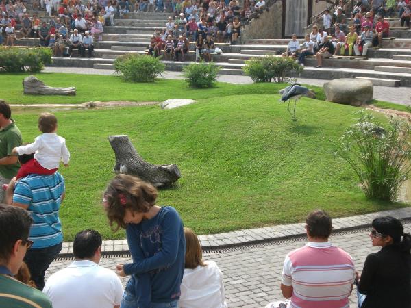 exhibicion bioparc mamiferos y aves