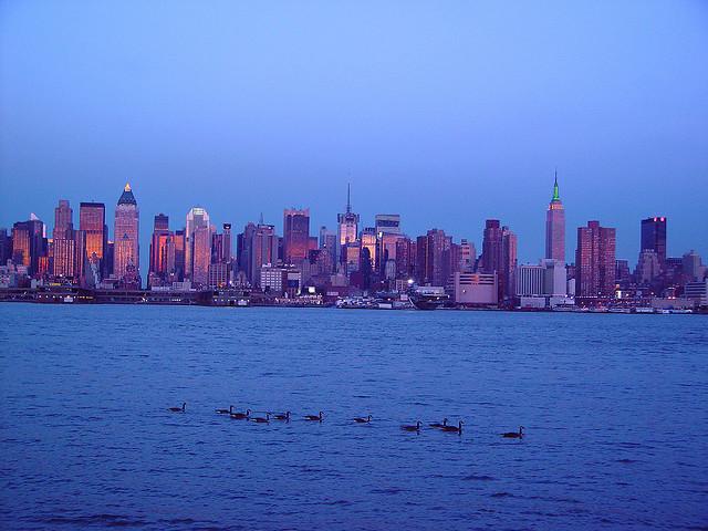 opsail de nueva york