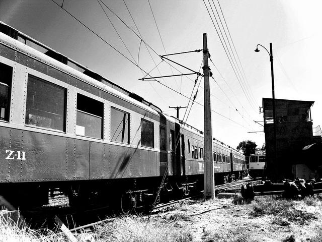 Tren como medio de transporte para viajar